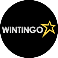 Wintingo reviews