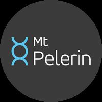 Mt Pelerin şərhlər