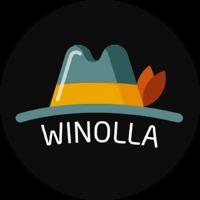 Winolla şərhlər