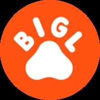 Bigl.ua reseñas