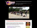 Adolescent Dogs Ltd reviews