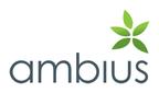 Ambius Indoor Plants Australia reviews