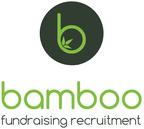 Bamboofundraising reviews