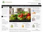 b.b.begonia reviews