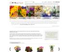 Big Apple Florist reviews
