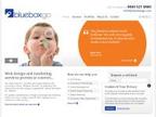 Blue Box Web Design reviews