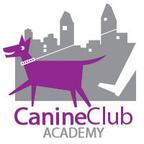 Canine Club Academy reviews