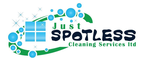 Cleaning Spot reviews