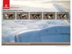 Emirates reviews