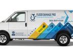 Flood Damage Pro reviews