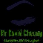 Mr David Cheung reviews