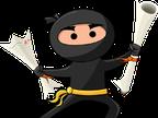 Ninja Essays reviews