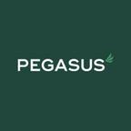 Pegasus Finance reviews