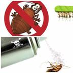 Pest Control Guys reviews