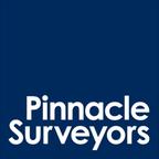 Pinnacle Surveyors reviews