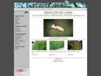 Plant & Machinery Finance reviews