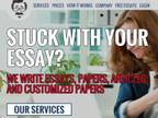 Professor Essays reviews