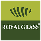 Royal Grass Artificial Grass reviews