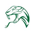 Serpent Communications LTD reviews