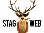 StagWeb reviews