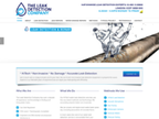 THE LEAK DETECTION COMPANY reviews