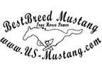 US Mustang reviews