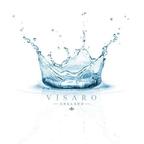 Visaro England reviews