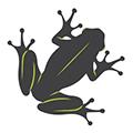 Winking Frog Studios reviews