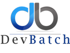 DevBatch reviews