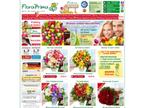 FloraPrima GmbH reviews