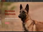 Ruidoso Malinois reviews