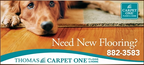 Thomas Carpet One Floor & Home reviews
