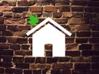 Your Natural Habitat reviews